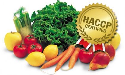 Chứng Chỉ HACCP